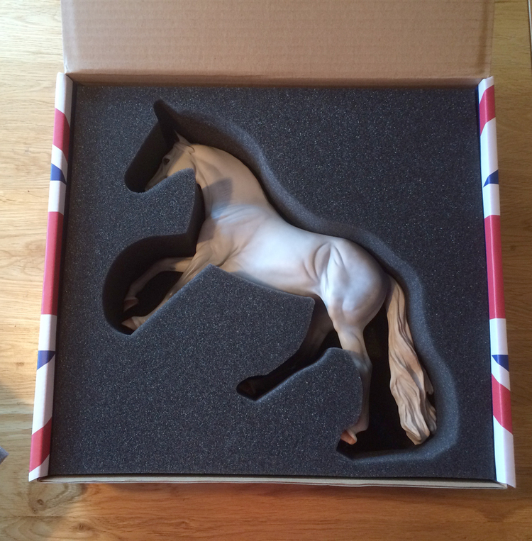 Model in box